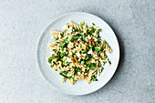 Fusilli with mozzarella and pine nut salsa