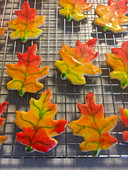 Oak Leaf shaped sugar cookies with autmn colors decoration