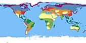 Earth's biomes, illustration
