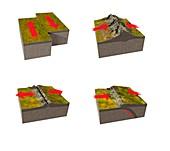 Tectonic plate boundary types, illustration