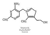 Molecular structure of vitamin B1