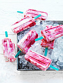 Raspberry and Vanilla Yoghurt Ice-Blocks