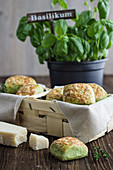 Scones with basil, thyme and Parmesan