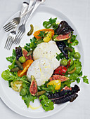 Garden salad with burrata and figs