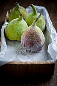 Four Figs in a Tray