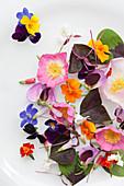 An assortment of beautiful wildflowers