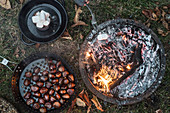 Roasted chestnuts and marshmallows at an autumnal camp fire