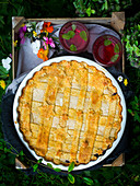 Blueberry pie with goat's cream cheese for a picnic