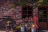 Herbst-Arrangement mit großen Zinkkübeln, wildem Wein und Kürbis am Hauseingang