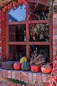 Kürbisse und Topf mit Heide vorm Fenster