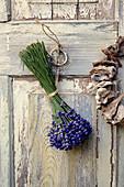 Lavendel - Strauß zum Trocknen an Türe gehängt
