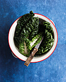 Silverbeet leaves in a colander with a knife