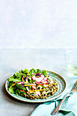 Salad with green lentils, radishes and red cabbage