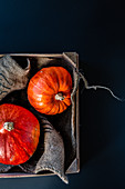 Two Hokkaido pumpkins in a vegetable box