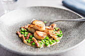Fried scallops on a bed of peas with bacon