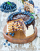 Honey layer cake Medovik with blueberries and sour cream