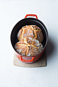 Spelt bread baked in a pot
