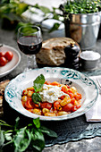 Gnocchi with tomatoes, buffalo mozzarella and basil