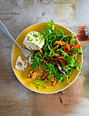 Mixed leaf salad with carrots, cream cheese and walnuts