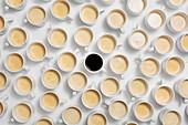 Viele Tassen Kaffee mit Milch, dazwischen eine Tasse schwarzer Kaffee (bildfüllend)