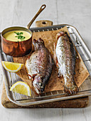 Grilled rainbow trout with lemon marjoram cream sauce