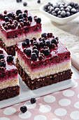 Layered cake with blueberry and chocolate