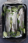 Fresh trouts prepared for baking