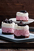 Mini cream and chocolate cake with blueberry
