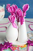 Pinke Blüten von Alpenveilchen als Tischdekoration