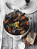 Rhineland-style mussels