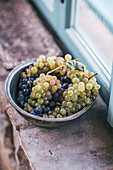 Grapes in a bowl on a window ledge