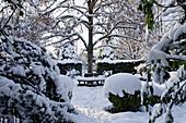 Blick auf verschneite Baumbank im winterlichen Garten