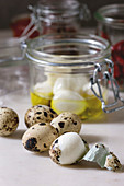 Ingredients for homemade pickled marinated quail eggs. Boiled eggs with olive oil in jar