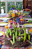 Ungewöhliche Tischdekoration mit Kalla und Tulpen, künstliche Knospen aus Papier
