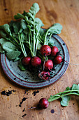 Freshly harvested radishes with soil and drops of water