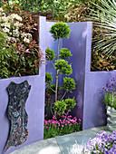 Scheinzypresse Etagen-Formschnitt und Grasnelken