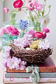 Blüten vom Zierkirsche 'Kanzan' und Ranunkeln