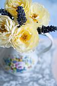 Blüten von Rose 'Graham Thomas' und Lavendel