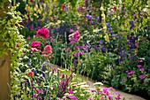 Beet mit Schafgarbe, Spornblume, Ziersalbei