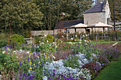 Blühender Herbst-Garten, Blick auf Haus