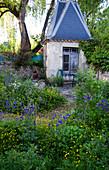 Kleines Gartenhaus im Frühlingsgarten mit Akelei und Butterblumen