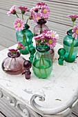 Blüten von Mini-Gerbera in Flaschen