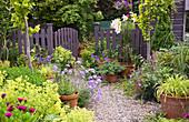 Garten mit Stauden, Kiesweg und Gartenzaun mit Gartentor, blühende Lilie im Topf