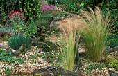 Kiesgarten mit Federgras und Wurzeln als Dekoration