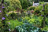 Bauerngarten mit Gemüse und Klematis