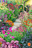 Bunte Beet im bienenfreundlichen Garten