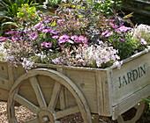 Hölzerner Wagen als Blumenbeet