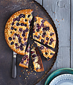 Marble blueberry cake