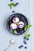 Sweden milk and blueberry ice cream