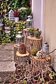Herbstliche Dekoration mit Laternen und Zapfen auf Baumstümpfen